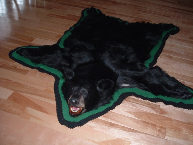 Greenfields Taxidermy Rug Gallery, Bear Rugs, Grizzly Rugs, Rug Tanning,  Minnesota